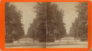 Cemeteries and Parks -- Avenue to Fountains